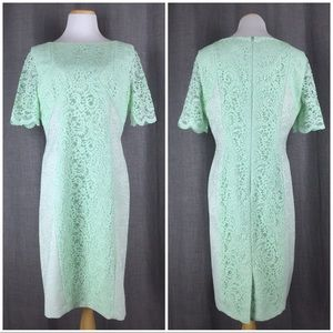 Tahari Size 14 Lace Sheath Dress